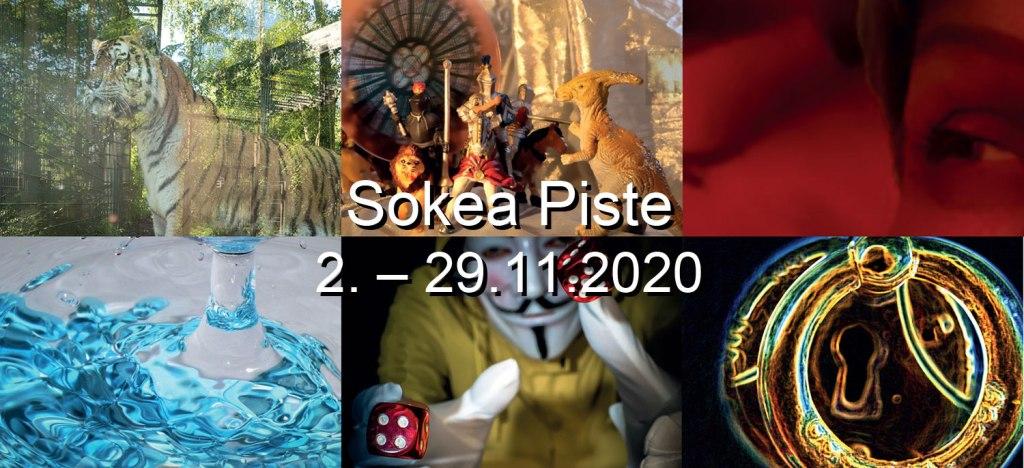 Otsikkokuvassa on kollasi kuudesta näyttelyn kuvasta. Tiikeri, leikkieläimiä, punainen ruusu, vesiroiske,  naamioitus nopanheittäjä ja värikäs ympyrä.